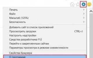 Способы определения версии internet explorer