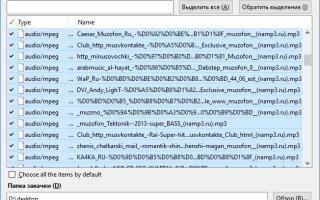 Обзор расширения FlashGot для браузера Mozilla Firefox