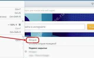 История браузера (как посмотреть, удалить и восстановить историю браузера)