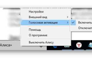 Как настроить под себя Алису от «Яндекс» и управлять компьютером с помощью неё</a>