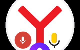 Как настроить ввод текста голосом в Yandex browser на ПК, почему не включается?