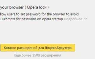 Как поставить пароль на Яндекс.Браузер: подробная инструкция