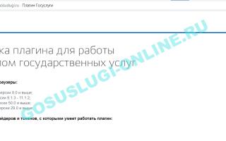 Как решить проблемы с браузером при работе с порталом Госуслуг?