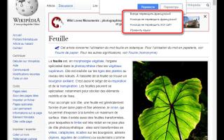 10 полезных функций «Google Переводчика», которые должен знать каждый