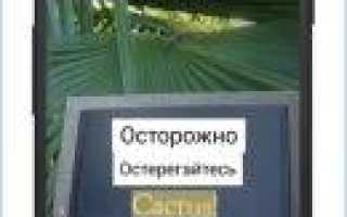 Переводчики для Windows 7 x32/64 bit скачать бесплатно на русском языке