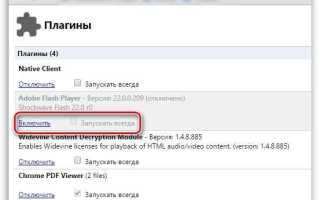Плагины в Яндекс Браузере (browser //plugins)