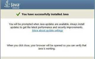 Enable java plugin for Internet Explorer without installing java