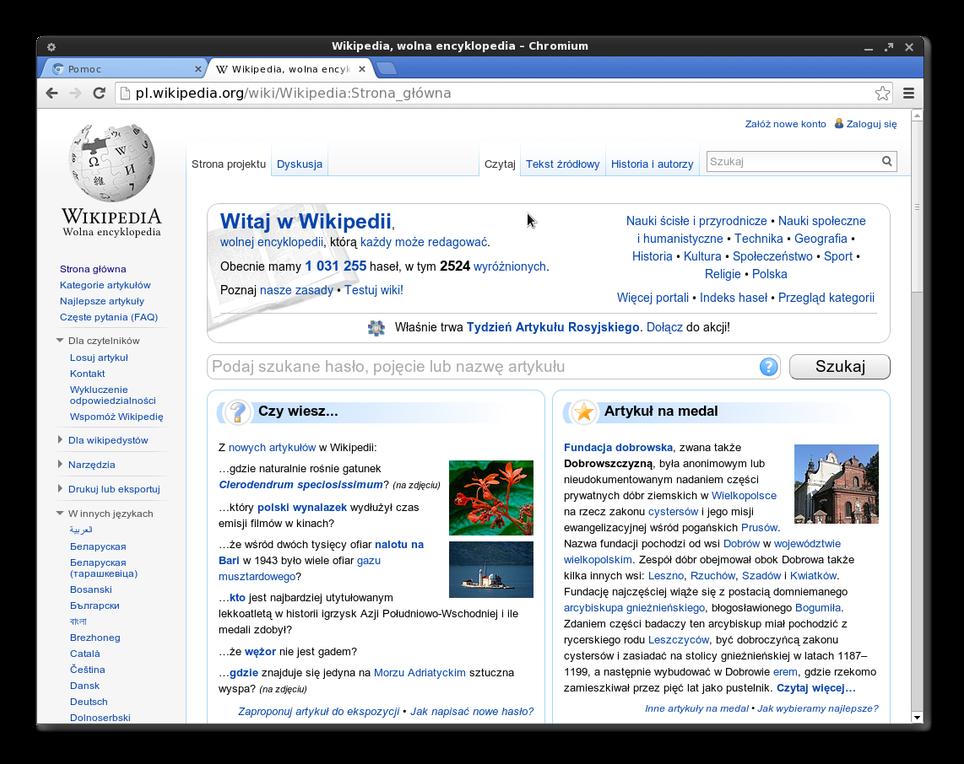 Brauzer-Chromium-dlya-Linux.png