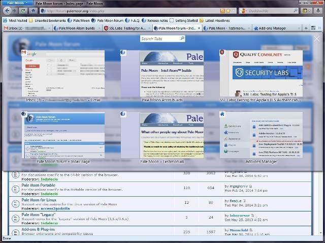 linux-browsers-palemoon.jpg