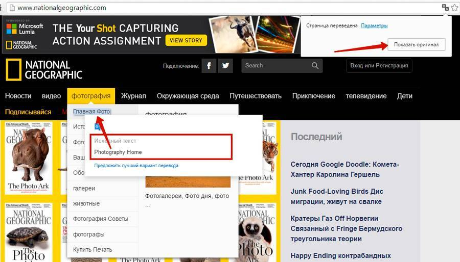 04_translate_page.jpg