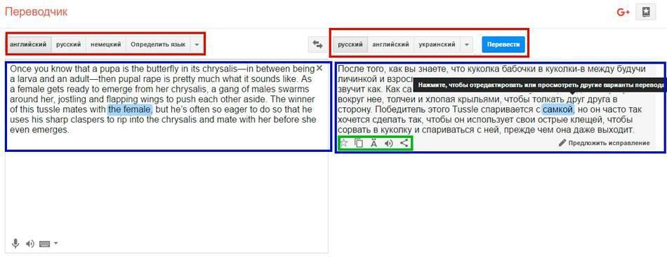 05_google_translate.jpg