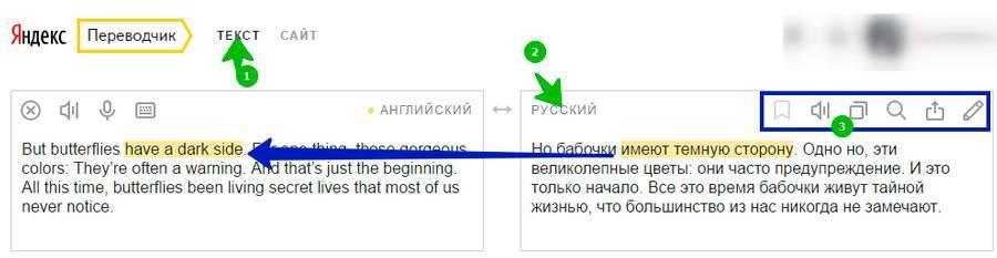 06_yandex_text.jpg