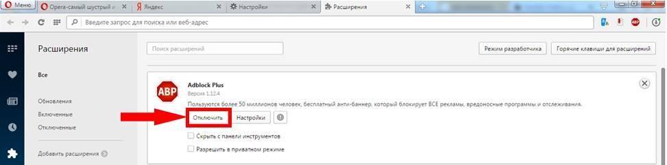 kak-okluchit-adblock-v-browser-opera-7.jpg