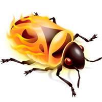 firebug-1.jpg