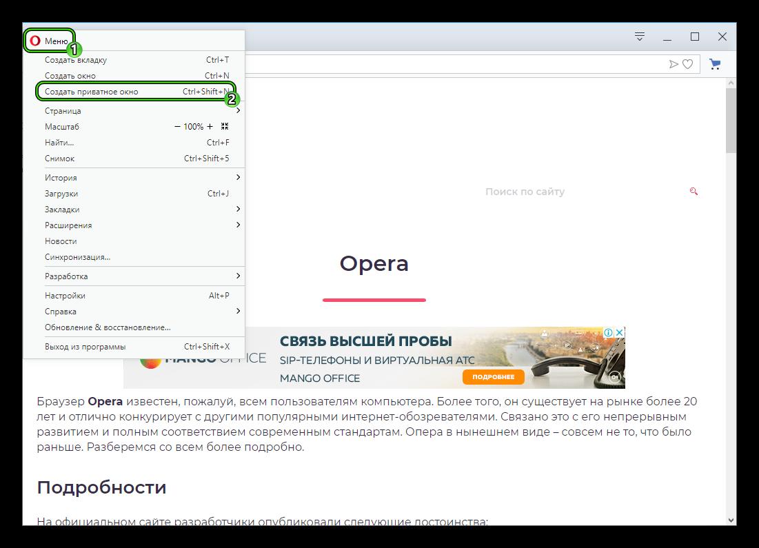 Punkt-Sozdat-privatnoe-okno-v-osnovnom-menyu-brauzera-Opera.png