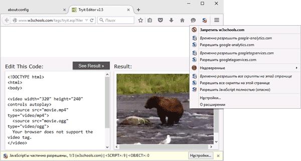 noscript-extension.png