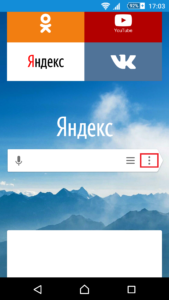 Yandex-Browser-Android-Settings-00002-169x300.png