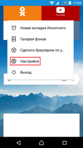 Yandex-Browser-Android-Settings-00003-169x300.png