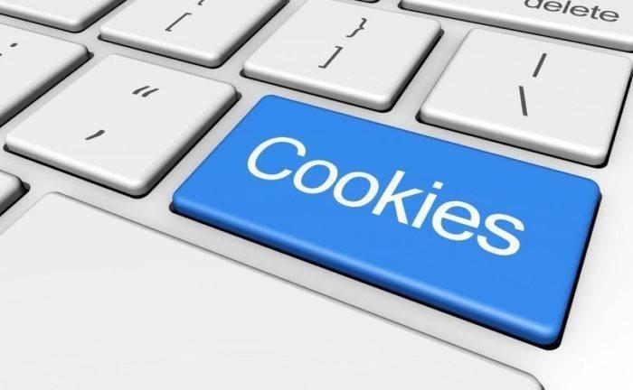 Informacija-o-tom-chto-takoe-fajly-cookie-i-zachem-oni-nuzhny-e1540852096652.jpg