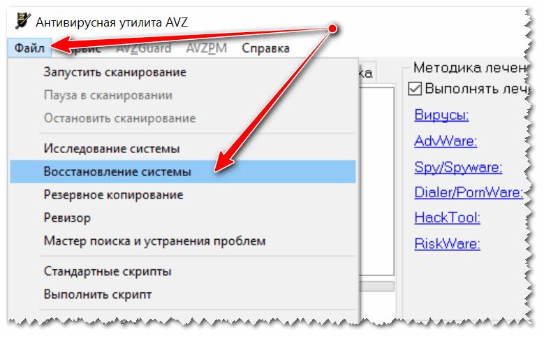 Vosstanovlenie-sistemyi-s-pomoshhyu-AVZ.png