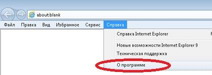 internetexplorerspravka.jpg