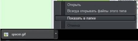 1361984346_otkryt_papku_zagruzok_chrome.jpg