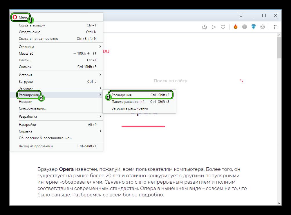Punkt-Rasshireniya-v-glavnom-menyu-internet-obozrevatelya-Opera.png