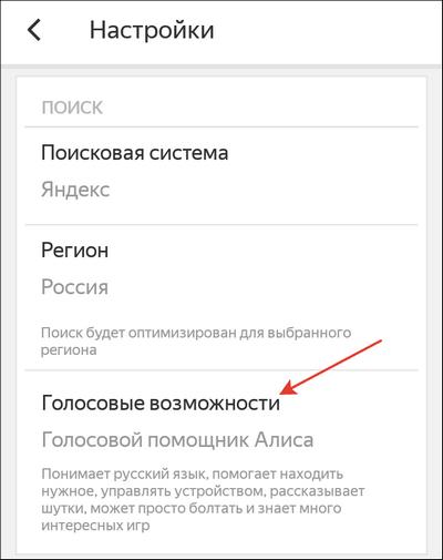 punkt-golosovye-vozmozhnosti.png