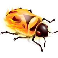 firebug-2.jpg