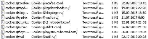 nastrojka-cookies-internet-explorer.jpg