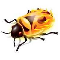 firebug-dlya-firefox.jpg