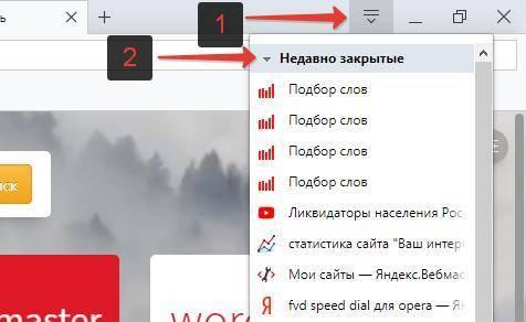 Otkryt-nedavno-zakrytye-sajty-v-Opere.jpg