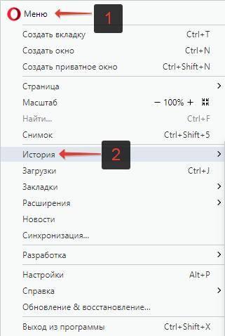 Istoriya-poseshhenij-v-Opera-menyu.jpg
