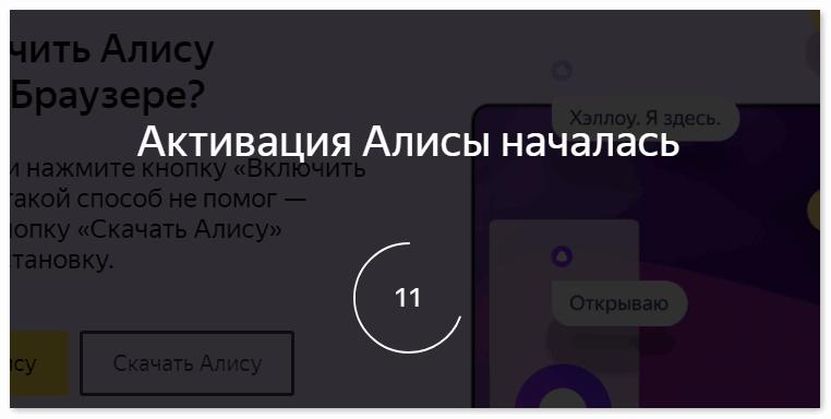 aktivatsiya-alisy.png