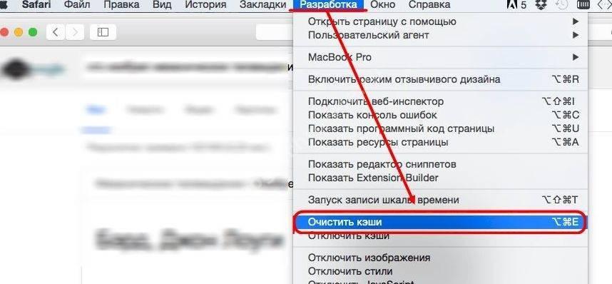 ochistit-kesh-10_1.jpg