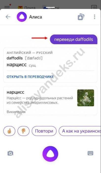 perevodchik-4.jpg